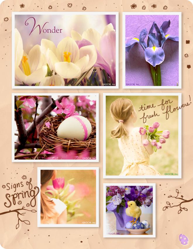 Easter Wonder