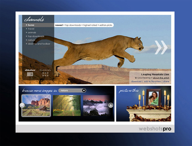Jaden's web design work