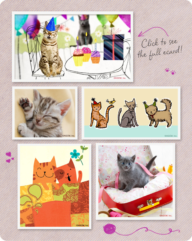 The purrfect birthday ecard for pet lovers