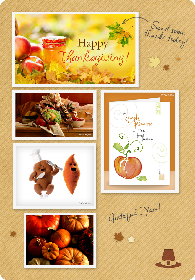 Send some thanks everyday - Seasonal Fall and Thanksgiving cards and ecards - fall leaves, pumpkins and sweet potatoes