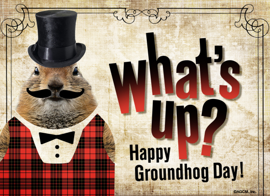 groundhog day 3284121_groundhog