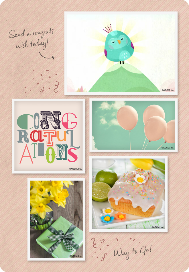 Congratulations Mood Board from stayinspired365.com