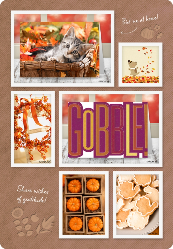Printable Thanksgiving Cards